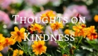 Thoughts on Kindness